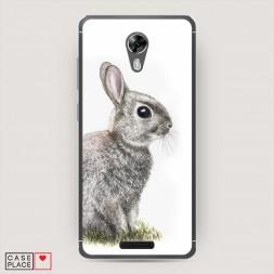 Cиликоновый чехол Кролик в траве на BQ 5201 Space