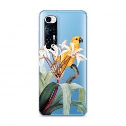 Силиконовый чехол Yellow parrot на Xiaomi Mi 10S